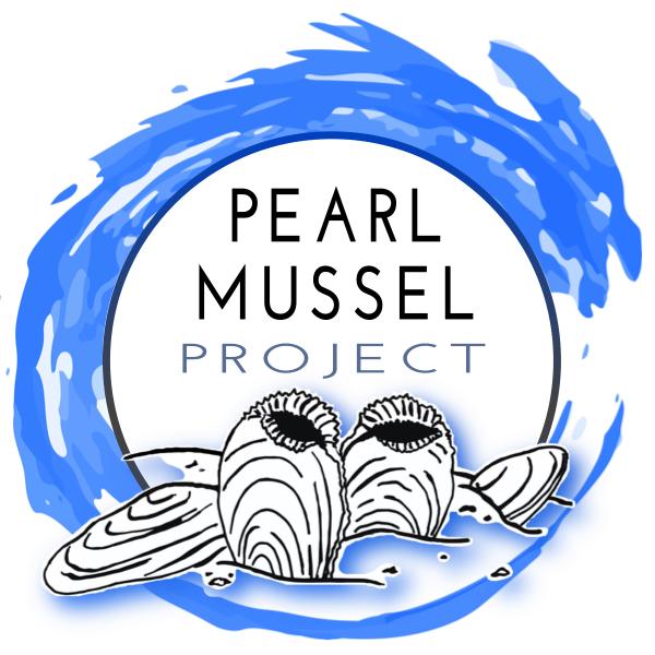 PMP Logo FINAL MEDIUM